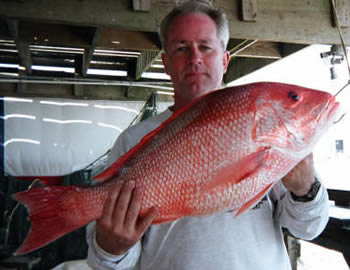 Freeport Galveston red snapper fishing charters in the Gulf of Mexico